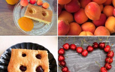 Obstkuchen (Kirsche/Marille)